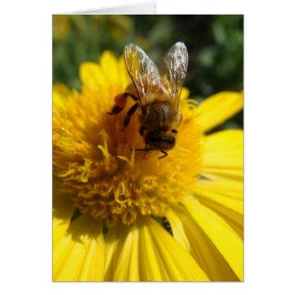 Abeja de la miel en margarita amarilla del color tarjeta de felicitación
