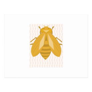 Abeja de la miel tarjetas postales