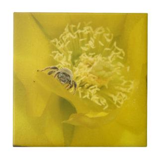 Abeja dentro de la teja de la flor del cactus del