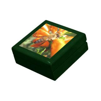 Abeja en la caja de regalo de la teja de la flor