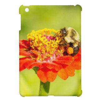 abeja en la flor roja con los sacos del polen