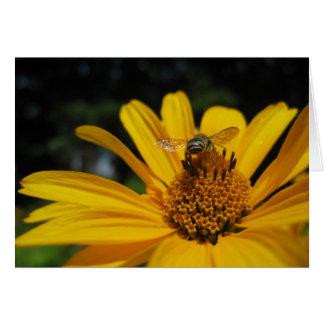 Abeja en la flor tarjetas