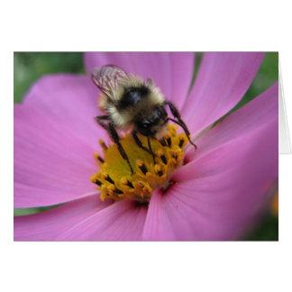 Abeja en tarjeta de nota de la flor