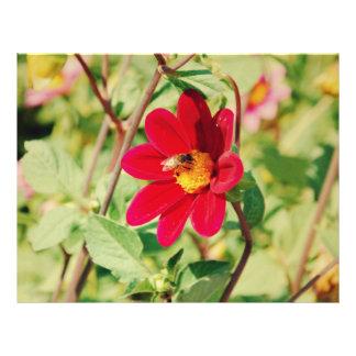 Abeja en una flor roja flyer personalizado
