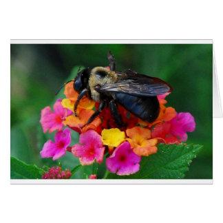 Abeja en una flor tarjeta de felicitación