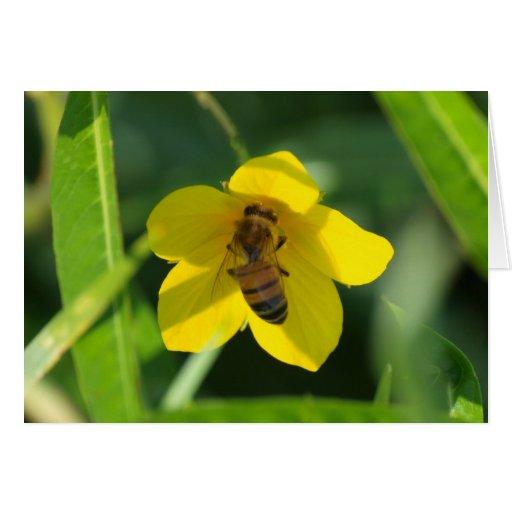 abeja ocupada felicitaciones