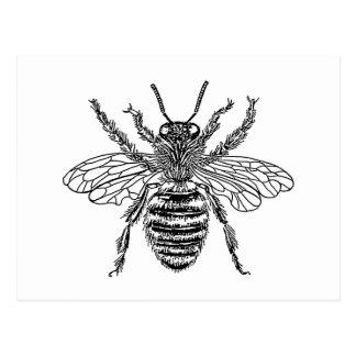 abeja postal