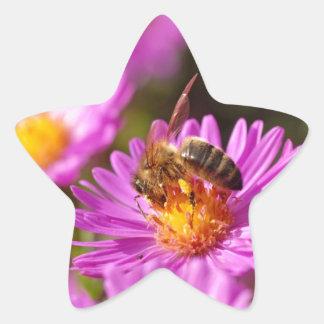 Abeja y polinización de la miel calcomania forma de estrella