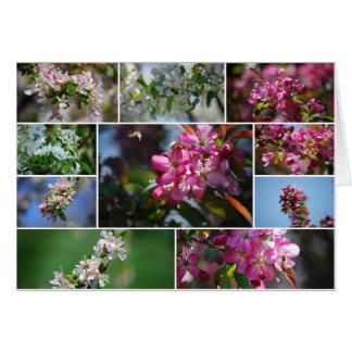 Abejas de los flores y de la miel de Apple Tarjeta De Felicitación
