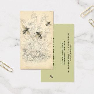 Abejas que dibujan, personalizado de la miel del tarjeta de visita
