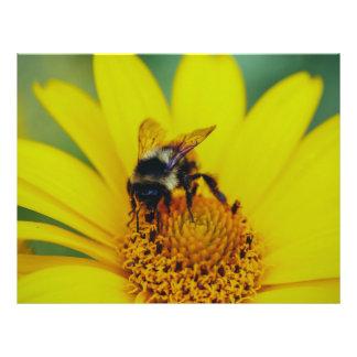 Abejorro en una macro amarilla de la flor tarjetas publicitarias