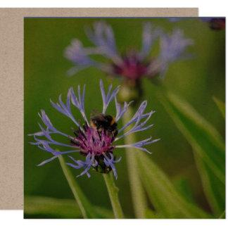 Abejorro y Cornflower Invitación 13,3 Cm X 13,3cm