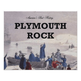 ABH Plymouth Rock Póster