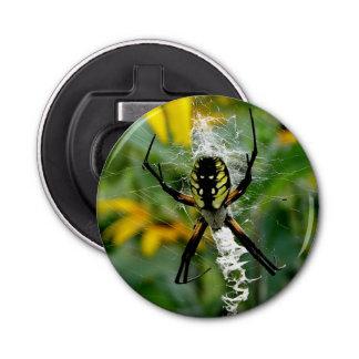 Abrebotellas Araña impresionante del orbe de la foto en Web