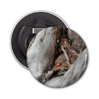 Abrebotellas magnetizado foto de una mariquita