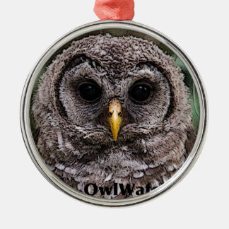 Abucheo - Owlet 2014 de Owlwatch Ornamento Para Reyes Magos