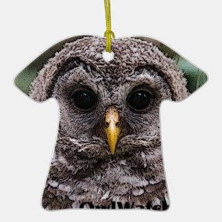 Abucheo - Owlet 2014 de Owlwatch