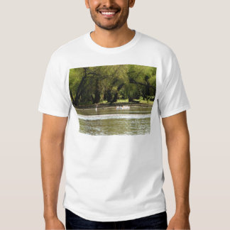 acampada camisas