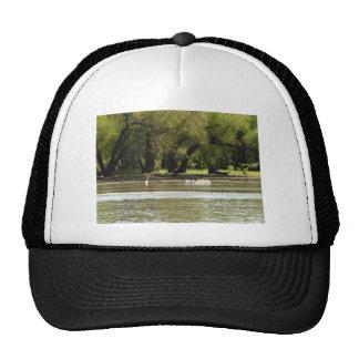 acampada gorra