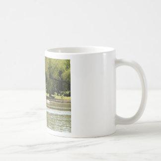 acampada taza