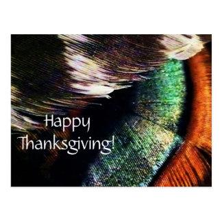 Acción de gracias feliz de la foto del arte de las postal