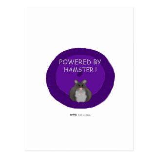 Accionado por el hámster (blanco puro) postal