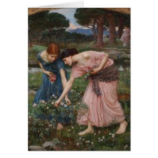 Acopio de capullos de rosa de John William Waterho Tarjeta De Felicitación