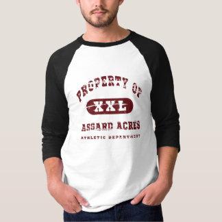 Acres de Asgard Camiseta