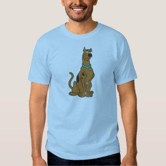 Actitud 27 de Scooby Doo Camisetas