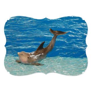 Actitud del delfín invitación 12,7 x 17,8 cm