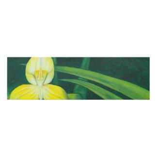 Acuarela de la original de la orquídea del DISA Cuadro