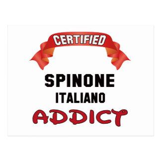 Adicto certificado a Spinone Italiano Postal