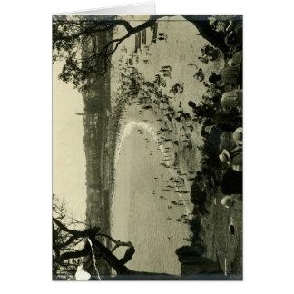 Admiración de la playa c 1940 de Coogee Tarjetón