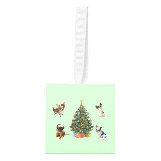 Adorno Cúbico Árbol de navidad y mascotas en los gorras de Santa