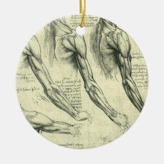 Adorno De Cerámica Anatomía del brazo y del hombro de Leonardo da