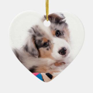 Adorno De Cerámica Australian shepherd puppy