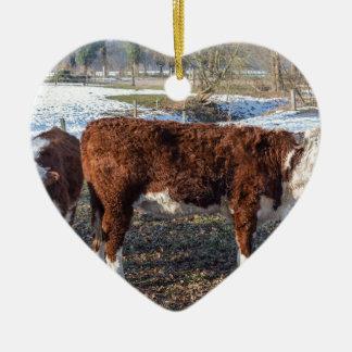 Adorno De Cerámica Becerros de Hereford en prado del invierno con