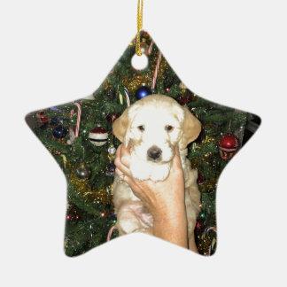 Adorno De Cerámica Charlie el perrito de GoldenDoodle en navidad