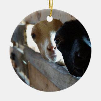 Adorno De Cerámica Foco de la cabra
