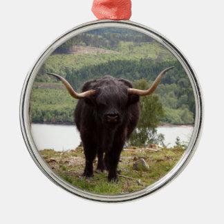 Adorno De Cerámica Ganado negro de la montaña, Escocia