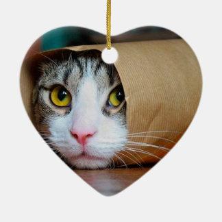 Adorno De Cerámica Gato de papel - gatos divertidos - meme del gato -