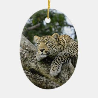 Adorno De Cerámica Gato salvaje animal del safari de África del árbol