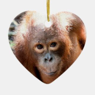 Adorno De Cerámica Huérfano Kobe del orangután del bebé