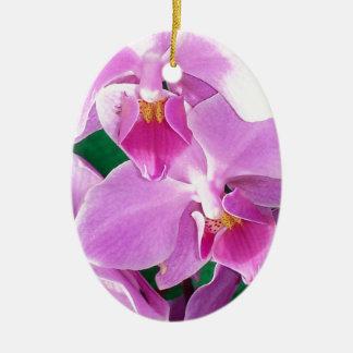 Adorno De Cerámica La orquídea florece primer en rosa