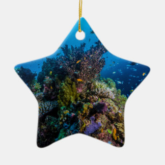 Adorno De Cerámica Mar de coral tropical de la gran barrera de coral
