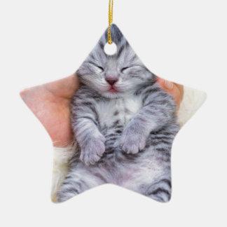 Adorno De Cerámica Mentira recién nacida del gato soñolienta a