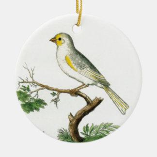 Adorno De Cerámica Natural History of Birds