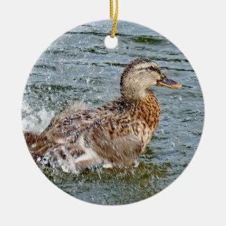 Adorno De Cerámica Pato del pato silvestre que juega en el agua