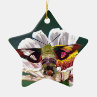 Adorno De Cerámica Polilla de colibrí