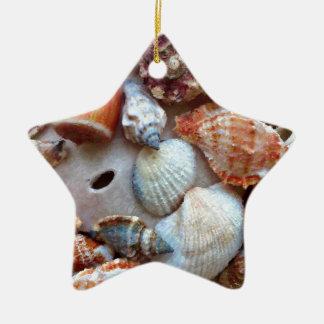 Adorno De Cerámica Seashells por la costa